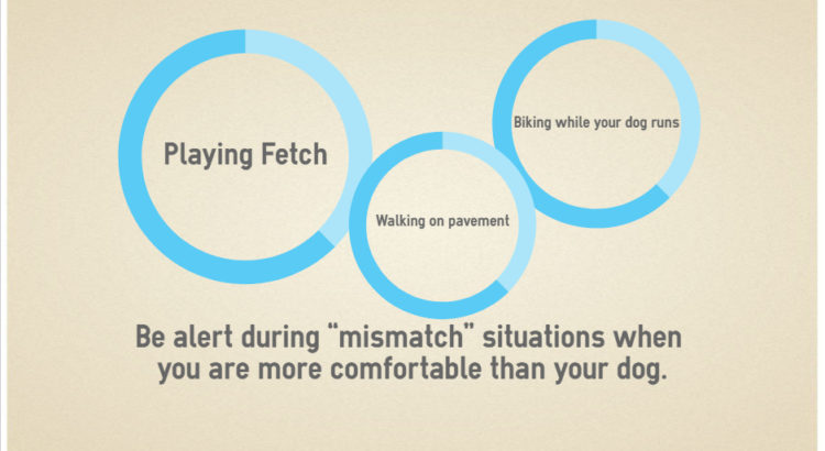 mismatch (2)